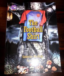 the-football-shirt-illustrated-by-paul-fisher