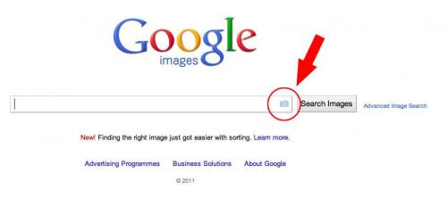 how-to-find-out-if-your-images-are-being-sold-on-the-internet