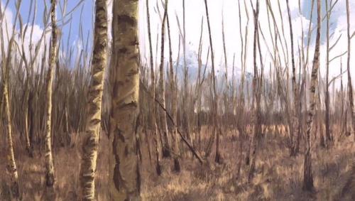 ant-fox-process-video