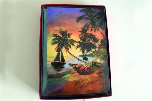 samples-for-tropical-beach-christmas-cards