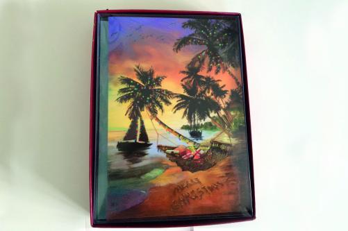 samples-for-tropical-beach-christmas-cards