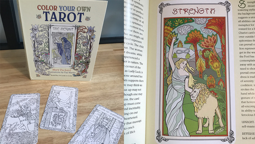 color-your-own-tarot-illustrated-by-fay-martin-on-shelves-now