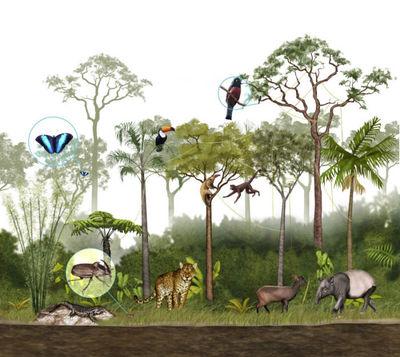 wildlifesample1-jpg