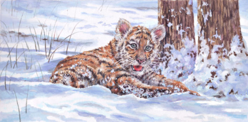 Darren Pinder Xmas Tiger Cub.jpg