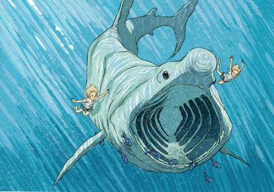 basking-shark-jpg