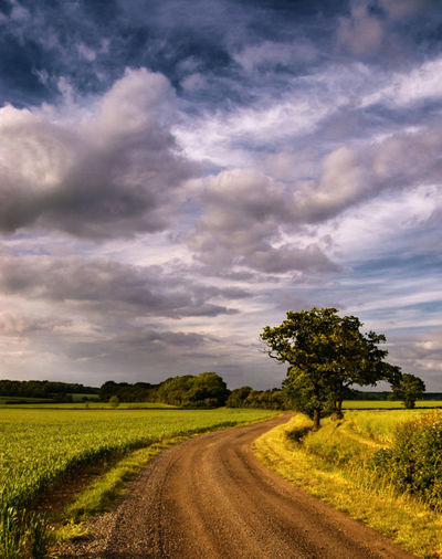 landscape-the-road-home-jpg