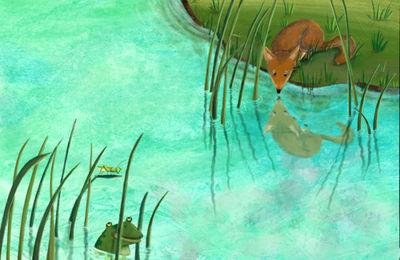 m-calderon-fox-toad