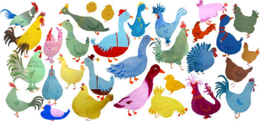 Ducks And Birds Walker