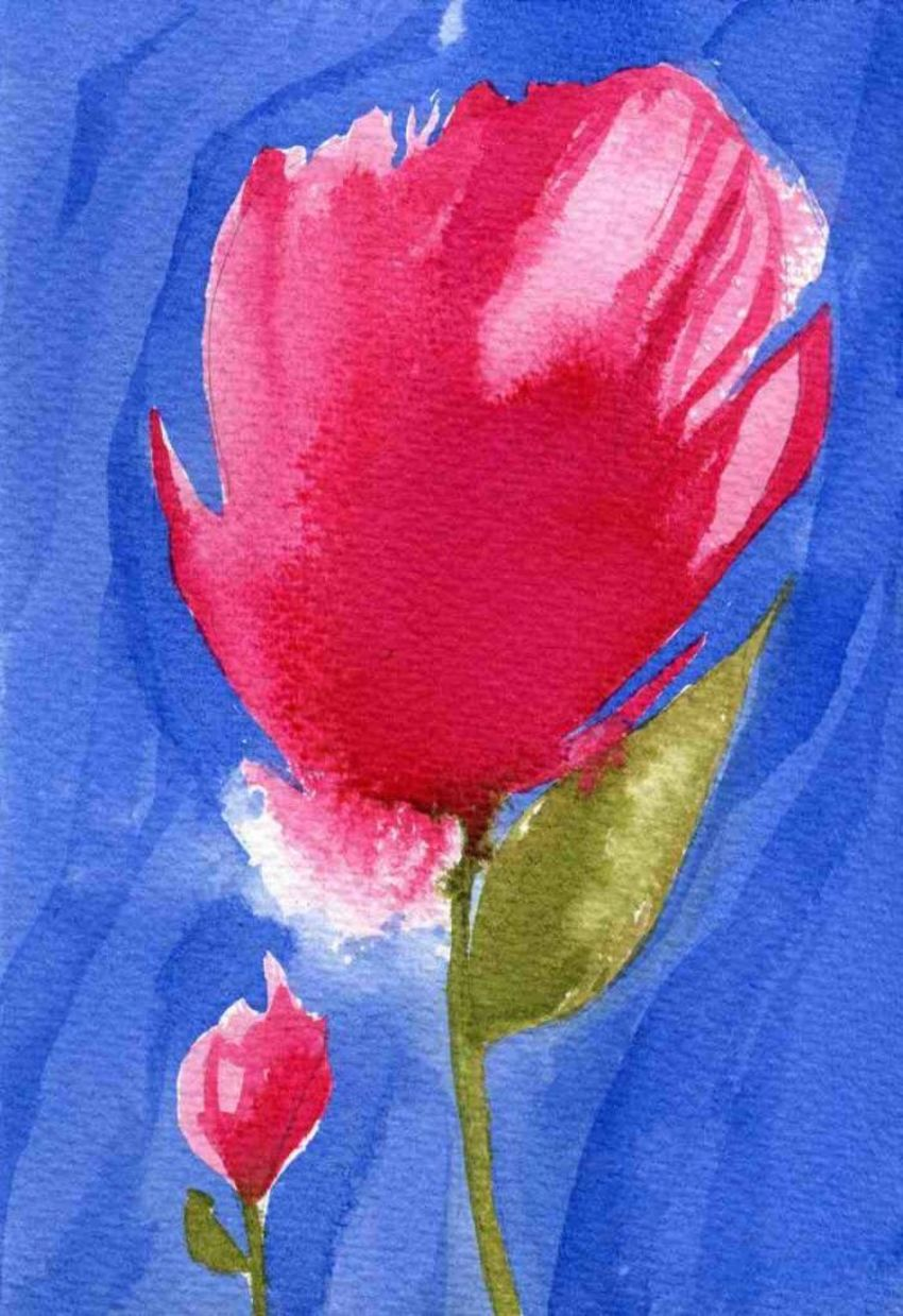 Pink Tulip In Blue LQ JPEG