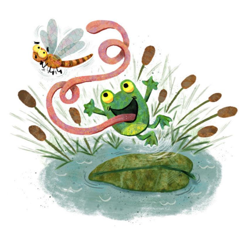 Frog Jumping At Dragonfly