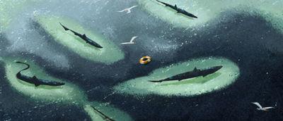 sharks-1-5