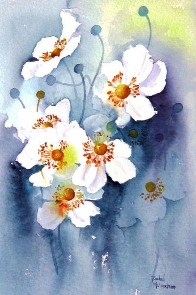 white-japanese-anemones-jpg