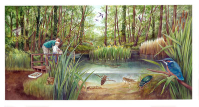 wild-oxford-pond-artwork