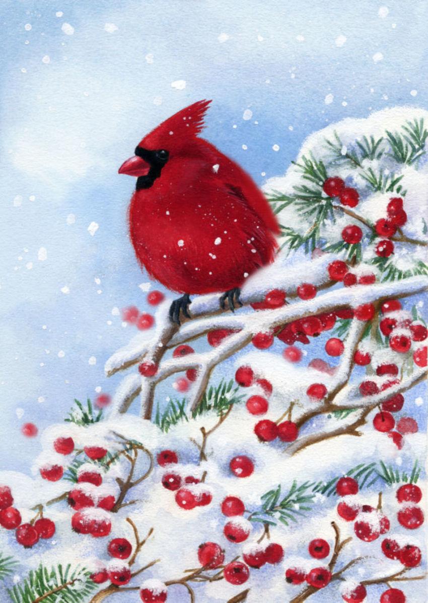 LA - Christmas Cardinal Bird