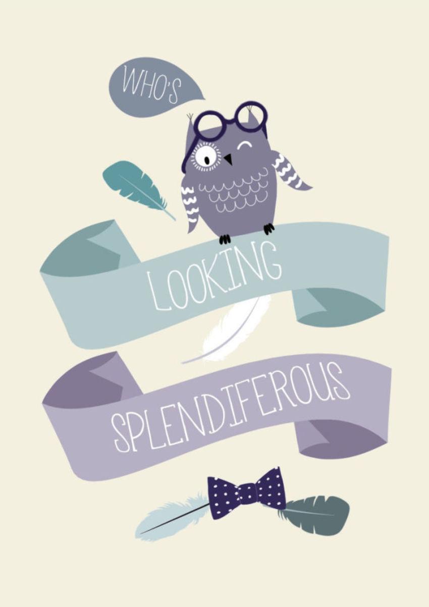 Scrolls & Banners Owl