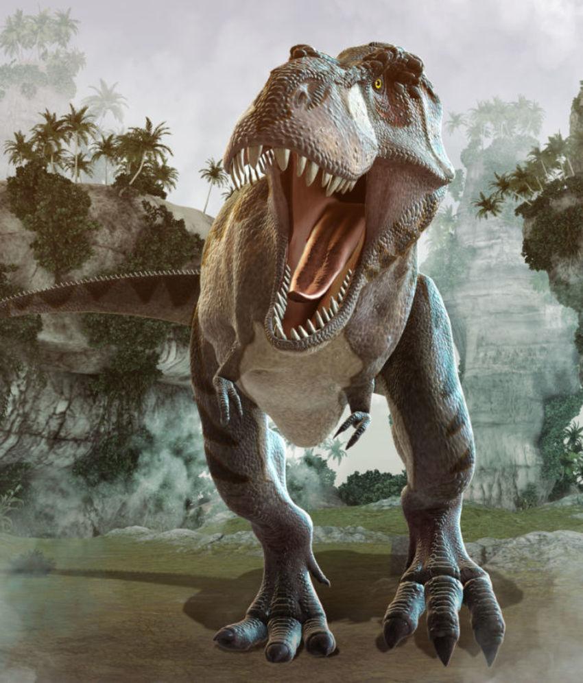 13 Tyrannosaurus Rex