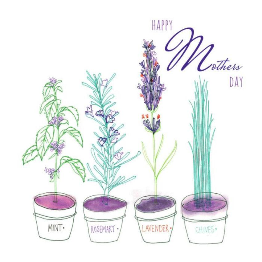 herbs_mothers_day_botanical.jpg