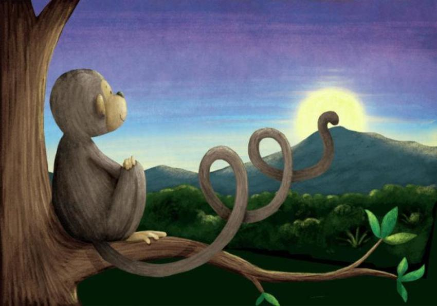 Monkey_sunset