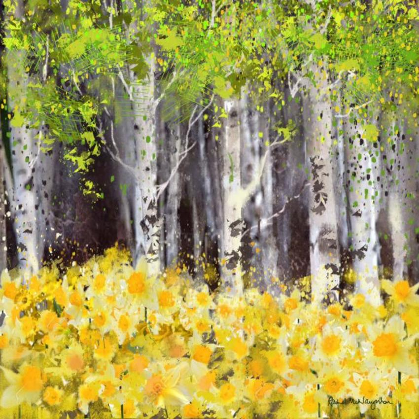 Daffodil Wood