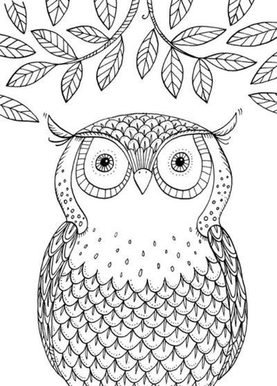 the-can-t-sleep-journal-owl-72