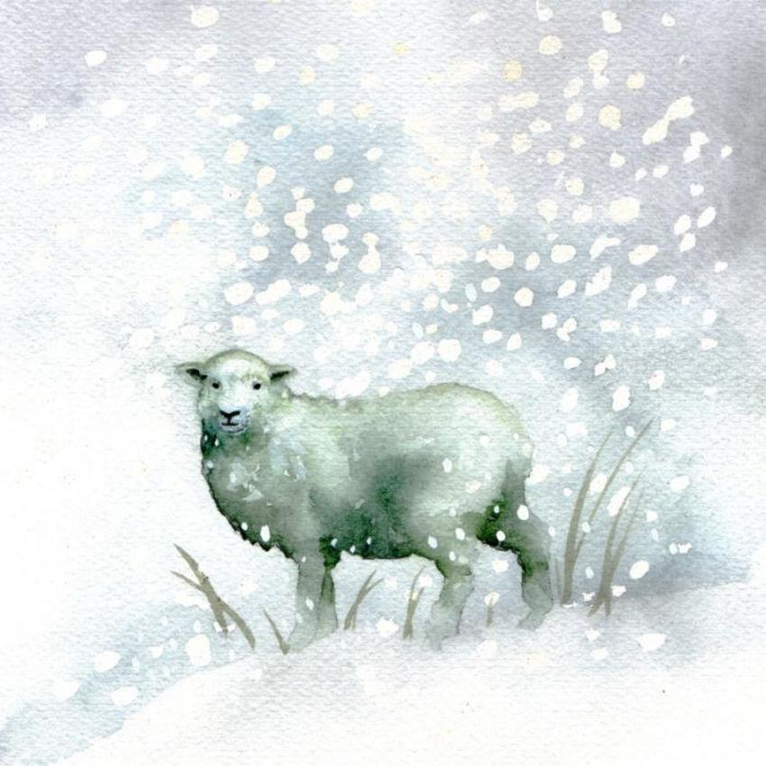 Snow Christmas Sheep