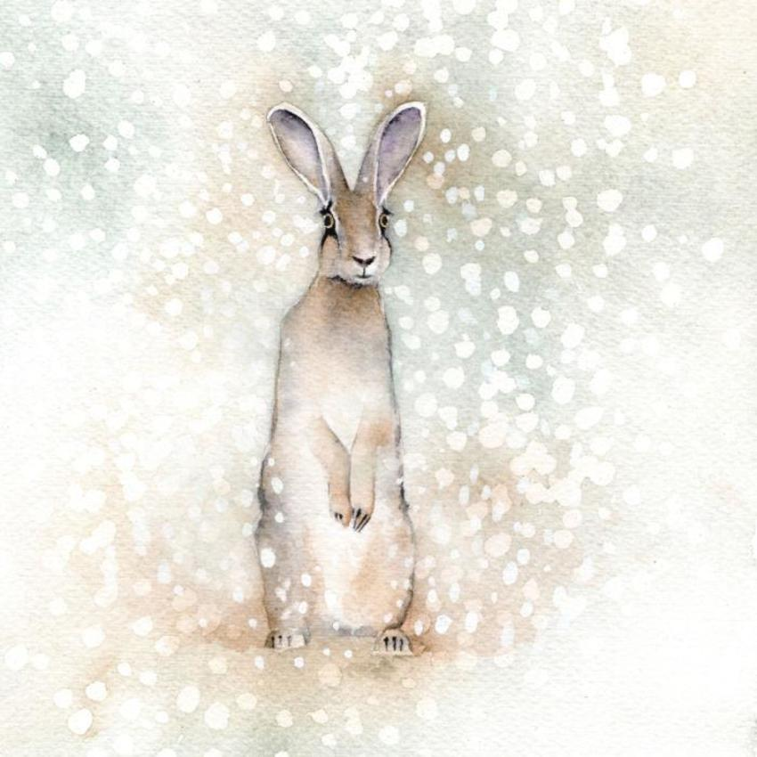 Hare In Snow Christmas