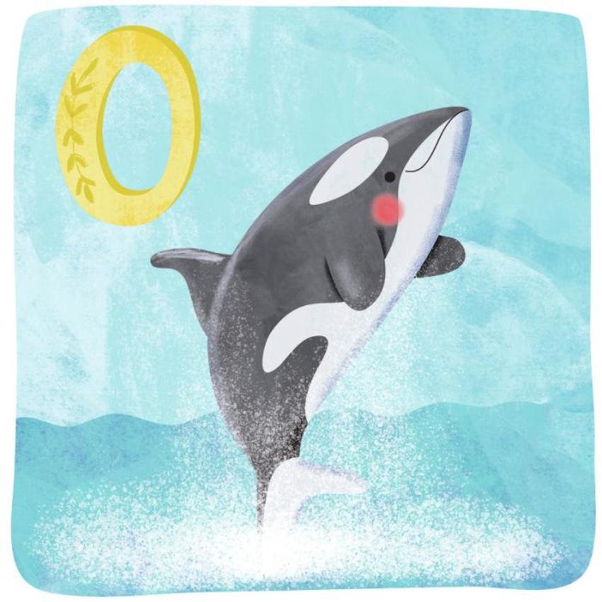 Orca - GM