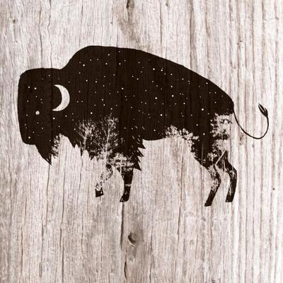 bison-moon