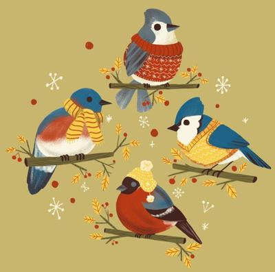 winter-birds-available