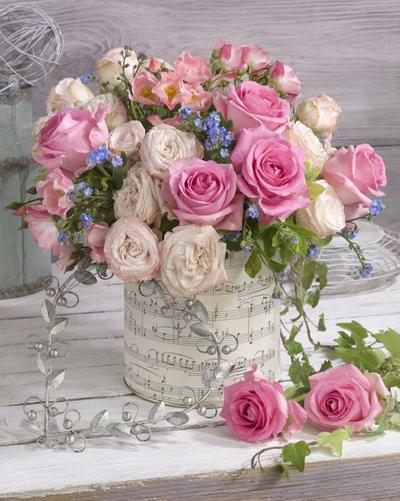 floral-still-life-roses-lmn48178