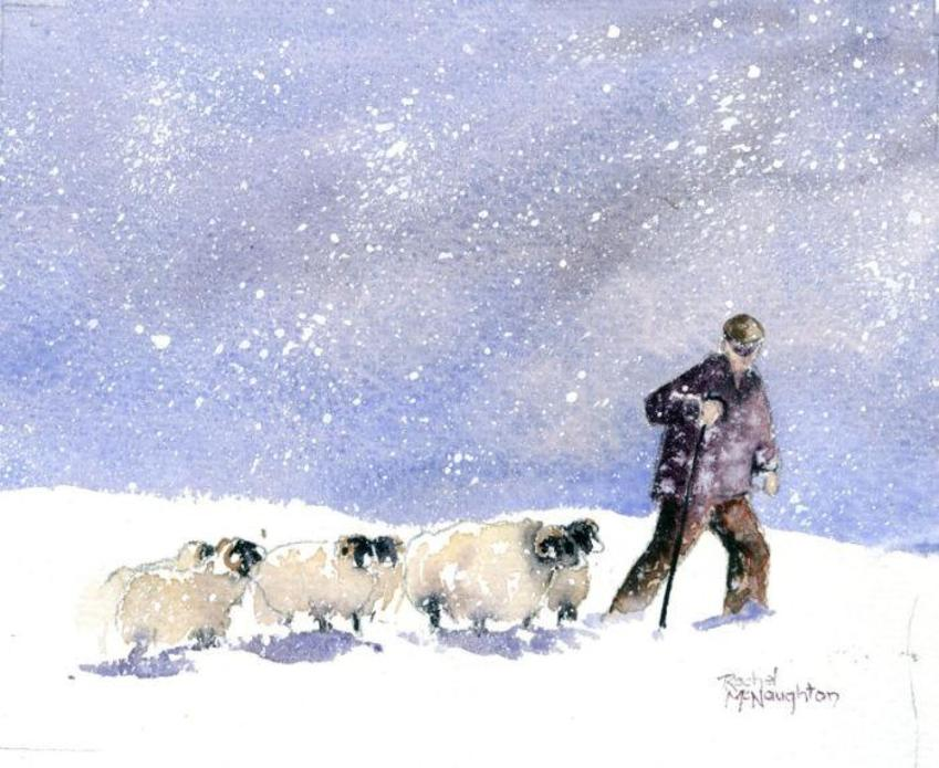Shepherding In Winter