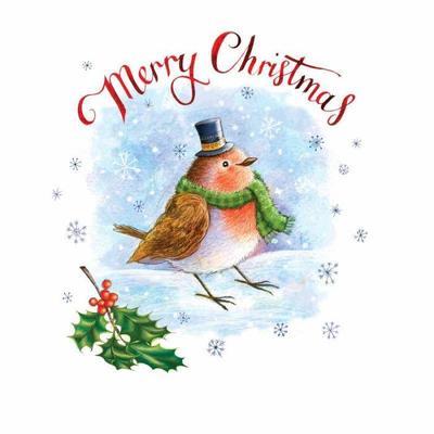 robin-christmas-card-1