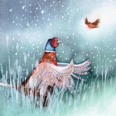 pheasant-christmas-robin