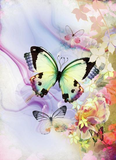 lsk-marble-dream-butterfly-garden