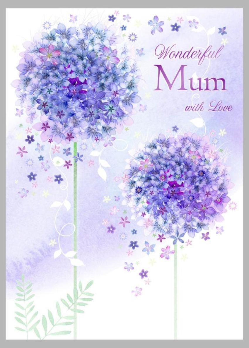 Aliums Mum