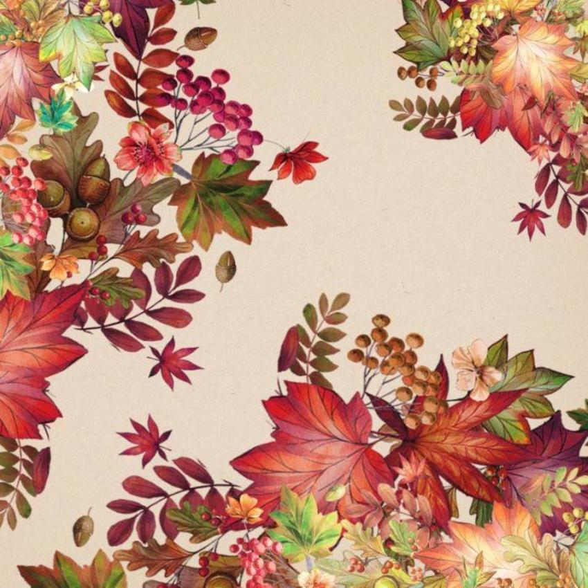 Seasons Paper 37