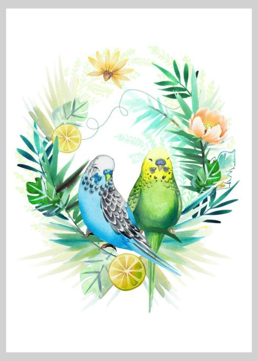 Tropical Budgies Oranges Copy