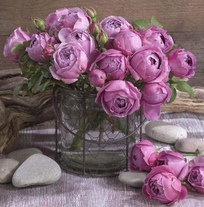 floral-still-life-roses-lmn41124