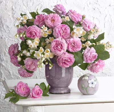 floral-still-life-roses-jasmine-lmn47422
