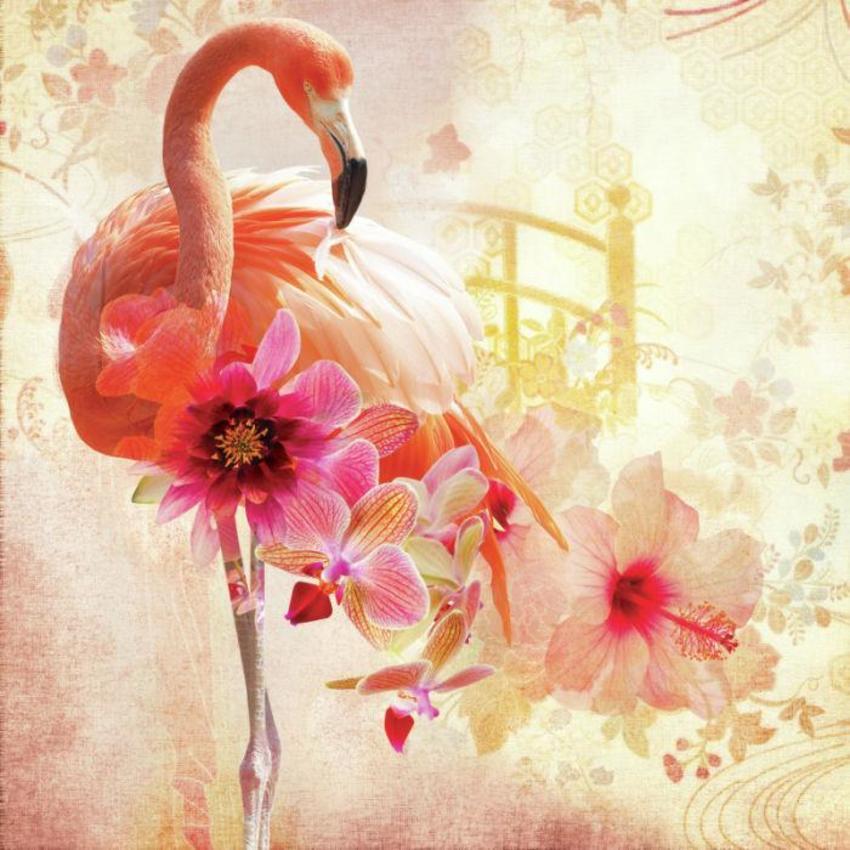 LSK_Orchid Flamingo