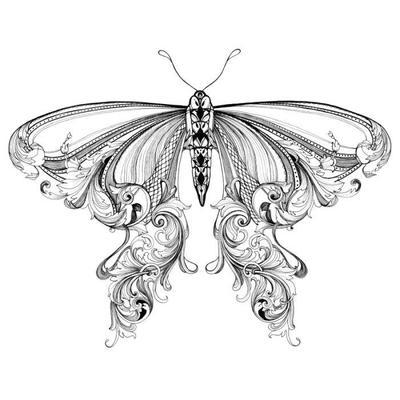 ccarroll-butterflybw