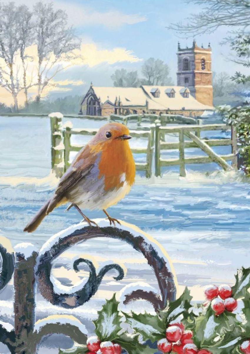 Robin On Gate