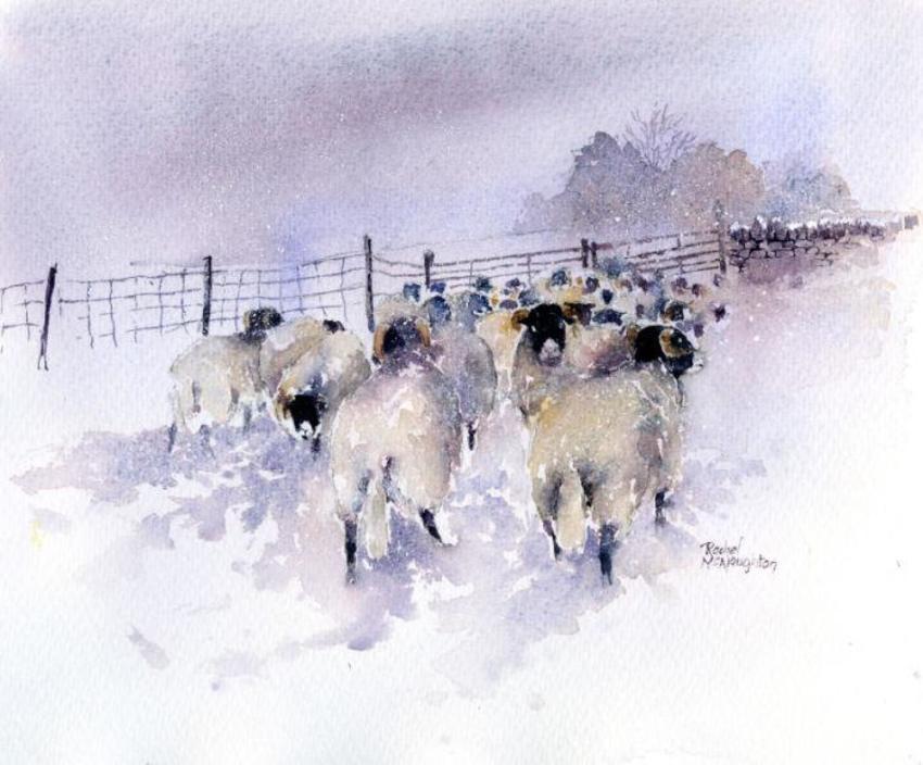 Snow Bound Flock