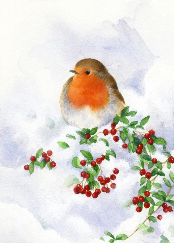 LA - Robin And Snow