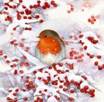 la-robin-and-berries