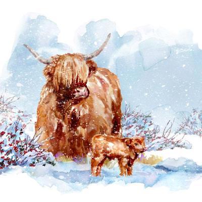 xmas-higland-cow-calf