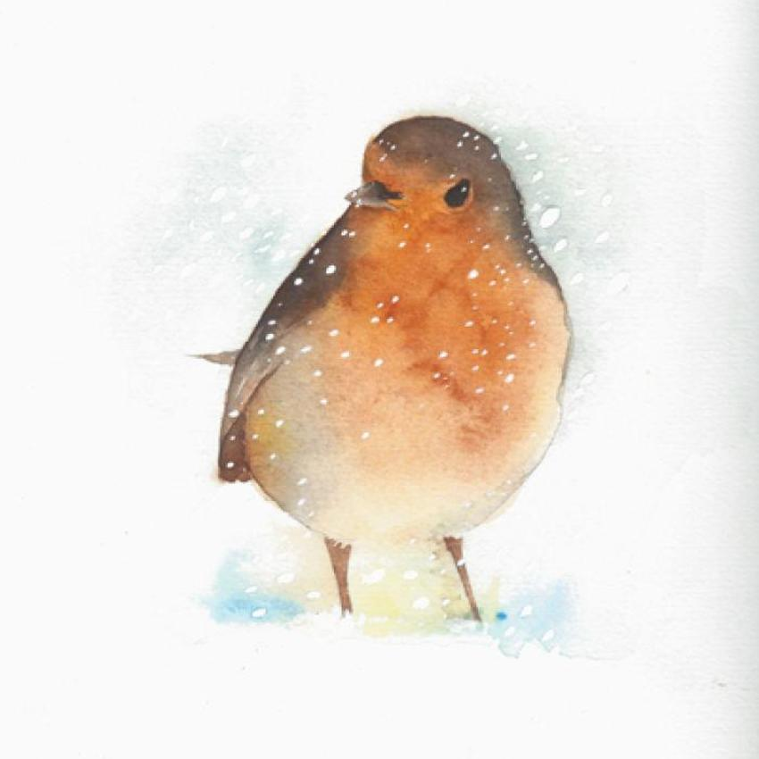 Christmas Robin Snow