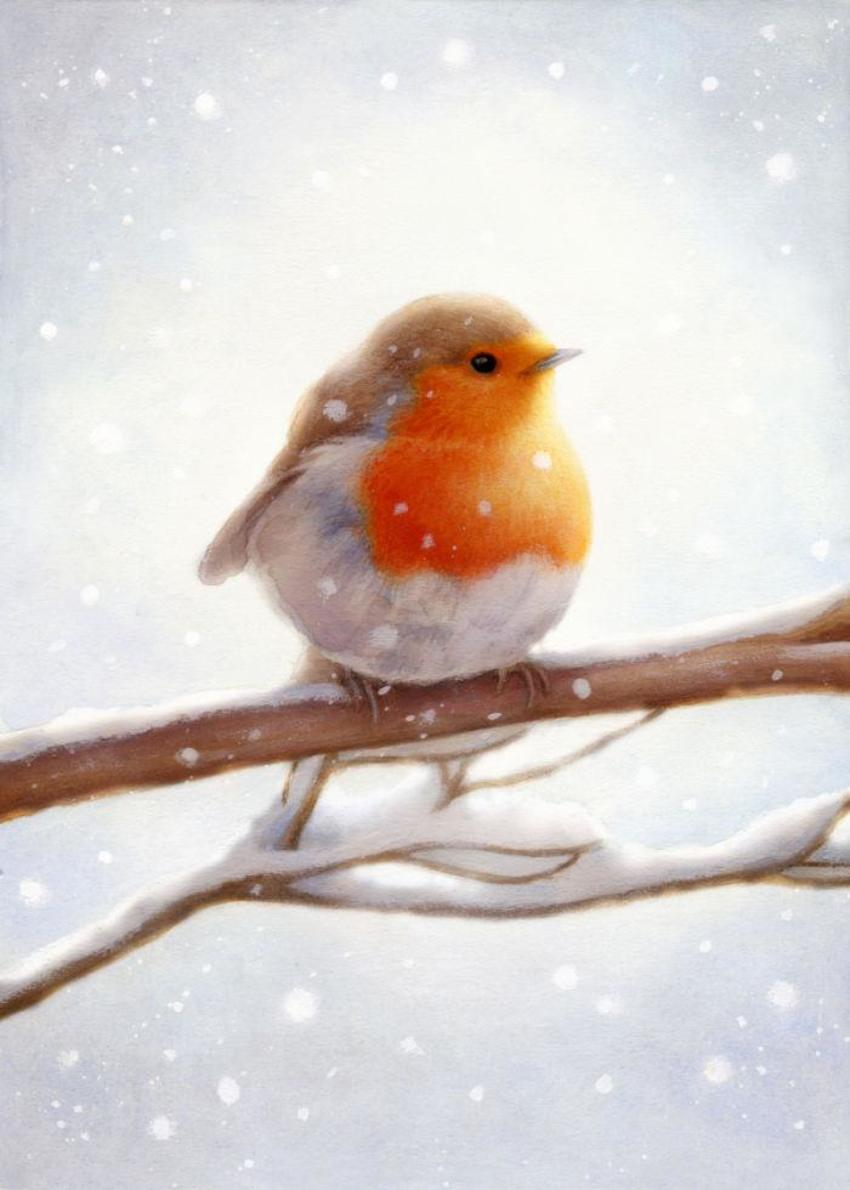 LA - Christmas Robin 2 10-16