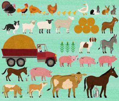 farm-animals-5