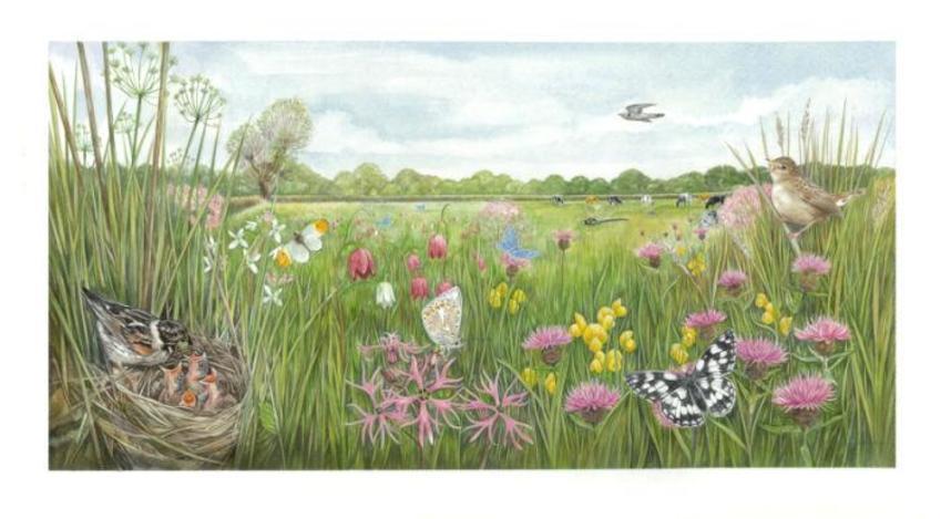 Iffley Meadow Artwork